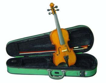 Musino 2000 Student Series Violin Outfit (MU-MTR-VN20)