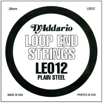 D'Addario Plain Steel Loop End Strings, .012 (10) (DD-LE012)