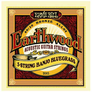 Ernie Ball Earthwood 80/20 Bronze Loop End Banjo Strings (EB-2063)