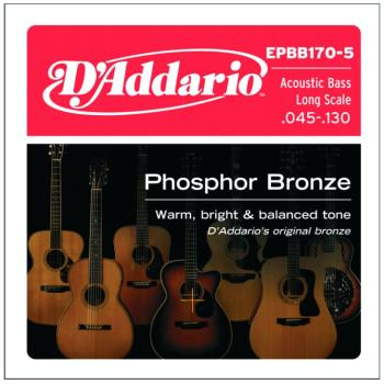 DAddario Phosphor Bronze Round Wound 5 String Acoustic Bass String Set, (45 - 130) (DD-EPBB1705)