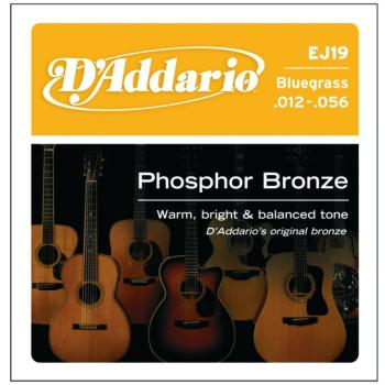 D'Addario Phosphor Bronze Acoustic , Bluegrass (DD-EJ19)