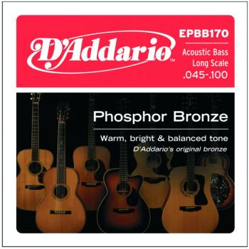 D'Addario 4 String Acoustic Bass Strings (DD-EPBB170)
