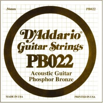 D'Addario Phosphor Bronze Single String, .022 (5) (DD-PB022)