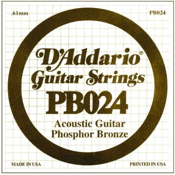 D'Addario Phosphor Bronze Single String, .024 (5) (DD-PB024)